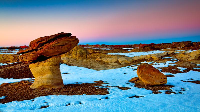 20121229_New Mexico_8420
