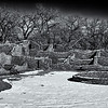 20121228_New Mexico_8456_BW