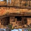 20121230_Colorado_8498