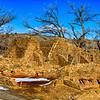 20121228_New Mexico_8452