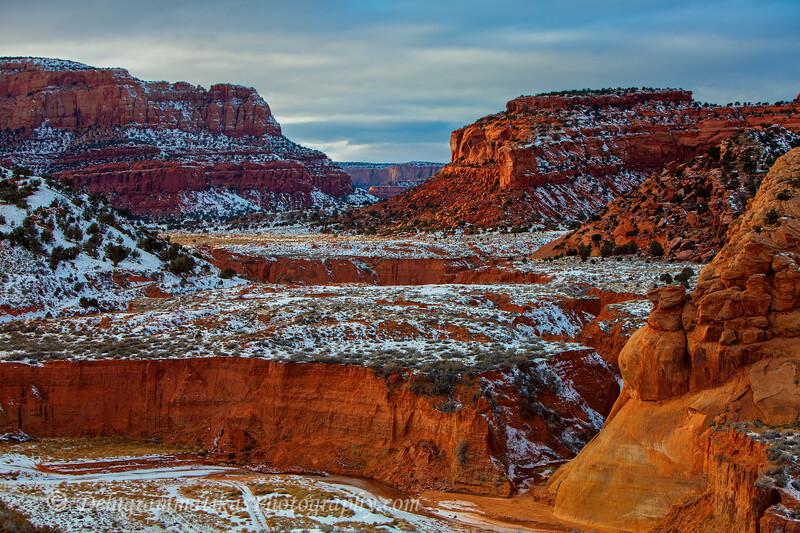 20121227_Arizona_8380