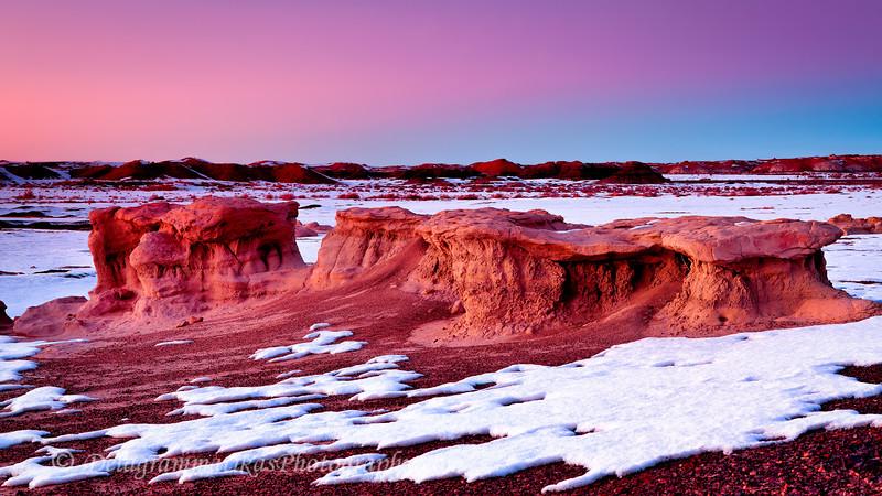 20121229_New Mexico_8424