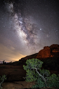 Milky Way & Juniper--20190705-2A4A5039