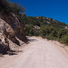 Duquesne Road; Patagonia Mountains; Arizona; Santa Cruz County; USA;