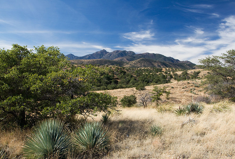 This is what the countryside east of the Santa Rita Mountains looks like.  The Santa Ritas are in the background.  The highest peak seen is Mount Wrightson at 9453 feet.