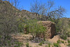 This old adobe structure was abandoned a long time ago . . . maybe when the gold ran out.