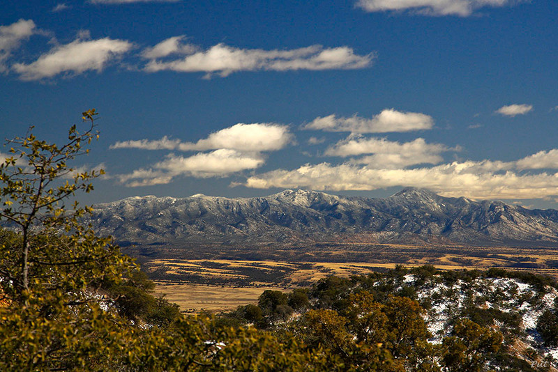 Looking across the San Rafael Valley from the Patagonia Mountains with the Huachuca Mountains in the background.  Taken near Washington Camp.