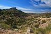 Sonoran desert southeast of Arivaca, Arizona . . . near Ruby.
