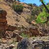 Spring is coming to Harshaw Creek, Arizona.