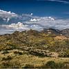 Golden Autumn -- Pajarito Mountains