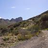 The road to Gunsight Pass