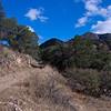 Josephine Canyon Road
