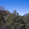 Mount Wrightson peak.