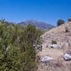 Mount Wrightson in the Santa Rita range, Arizona.
