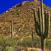 This is on the Tohono O'odham Indian Reservation in the Baboquivari Mountains near Sapano Vaya, Arizona.