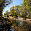Late October along the San Pedro River near the ghost town of Fairbank, Arizona.