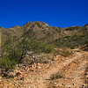 This is the road to Sapano Vaya, which is located in the Tohono O'odham Nation in southern Arizona.