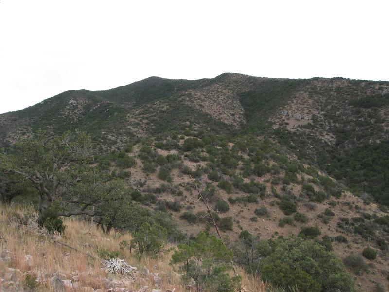 Looking towards the west ridgeline from ridge bump 6220.