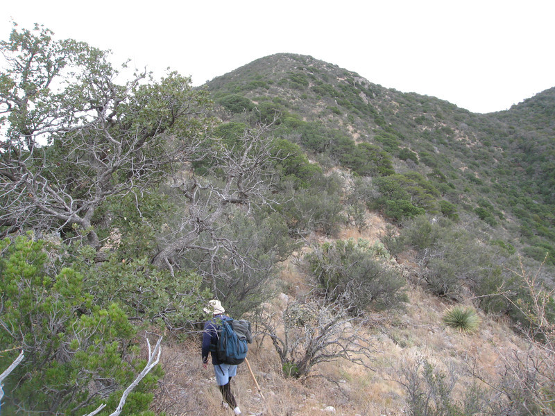 Now on the west ridge, we drop off a slight knoll at around 7200 ft.  Apache Peak is now close.