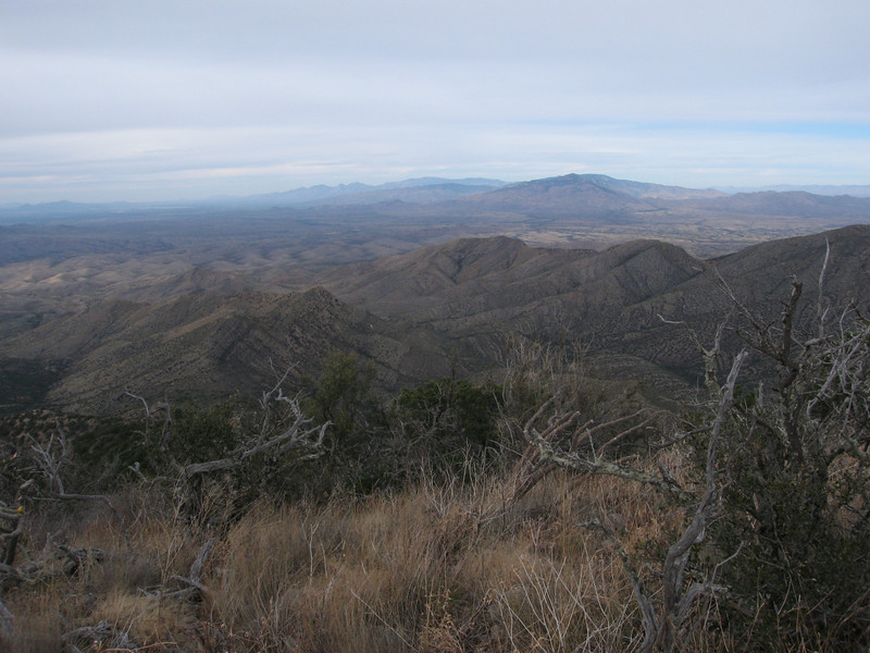 The Santa Catalina and Rincon Mtns to the north.