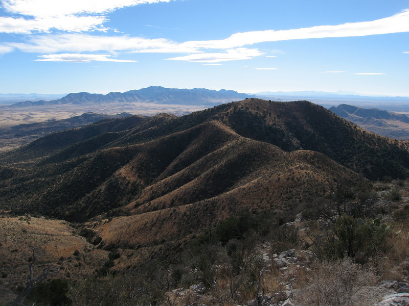 The south ridge leading to Russellville Peak.  The Dragoon Mtns are in the near background with the Mule Mtns (Bisbee) and Sierra de San Jose (Mexico) in the far distance.