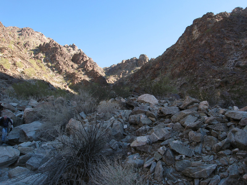 Looking back up the wash.
