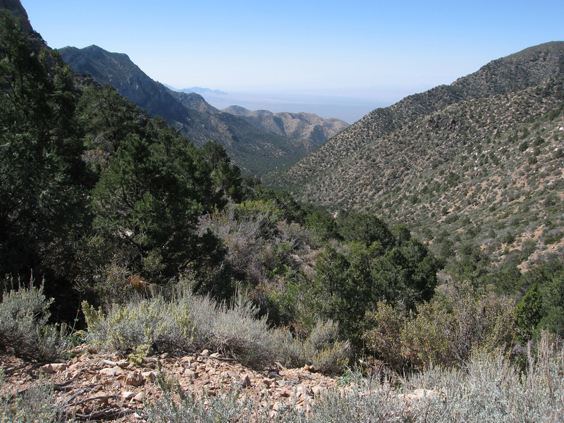 Looking down the upper portion of Elbow Canyon.