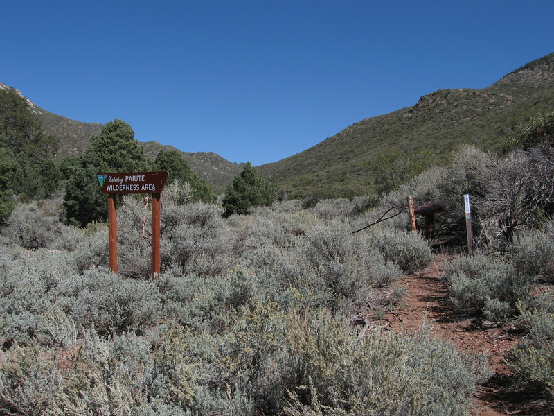 The road ends at the Paiute Wilderness Boundary.