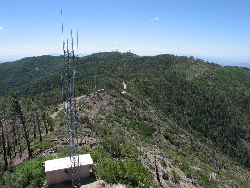 View of Pinal Peak from the lookout tower.