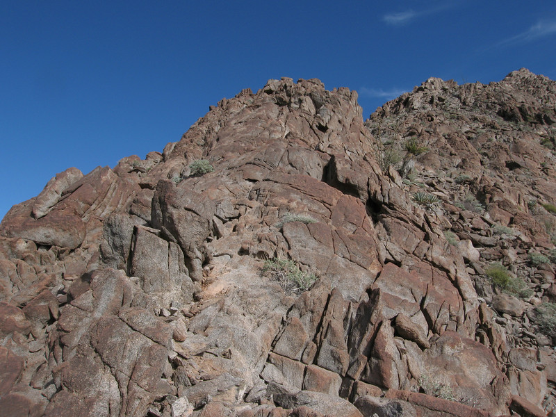 The ridge quickly turns to rock.