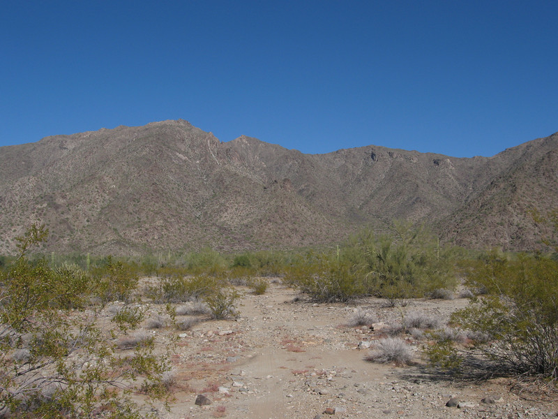 The hiking route initially follows a road for a short distance.