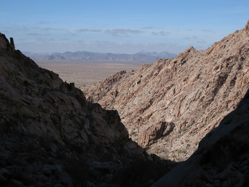 Looking west back into the canyon with the Cabeza Prieta Mtns in the background.