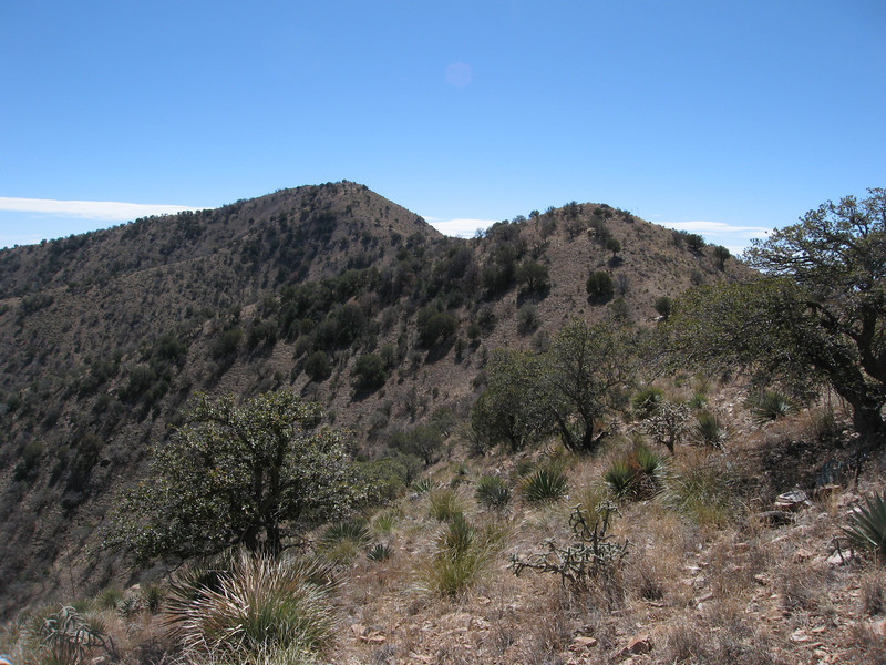 Skirting a ridge bump.