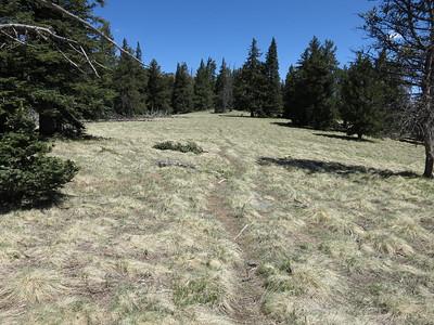 Schultz Peak -  May 29, 2017