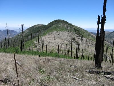 Snowshed Peak - June 13, 2015