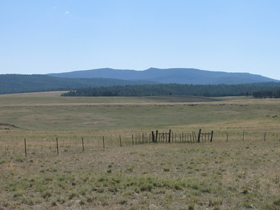 Apache County, Mt. Baldy - Jun. 23, 2007