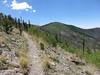View of Chiricahua Peak in 2014.