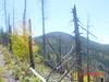 View of Chiricahua Peak in 2006.