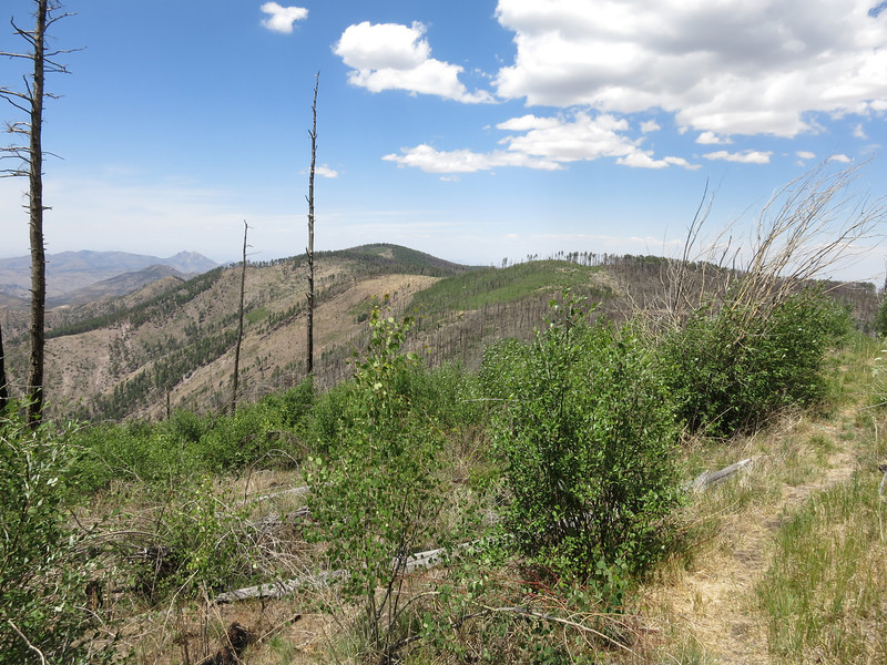 View north along the crest from Chiricahua Peak in 2014.