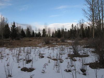 Greenlee County, Unnamed Peak 9441 - Dec. 27, 2006
