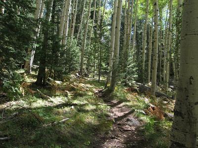 Kachina Trail - Oct. 10, 2010