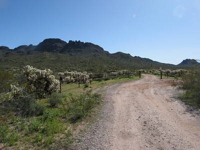 Vulture Mtns, Vulture Peak - Mar. 14, 2010