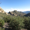 View southeast down the canyon.