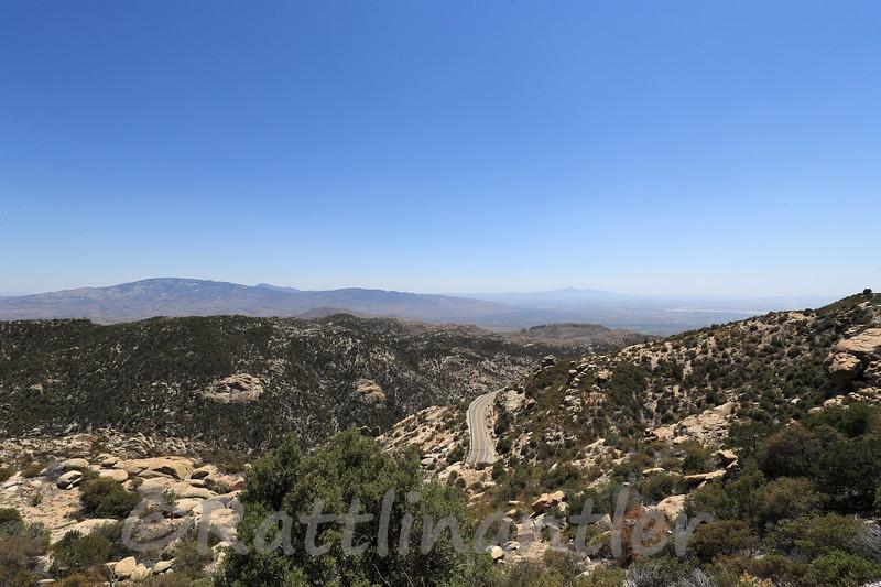 6/18/2021<br /> Mount Lemmon
