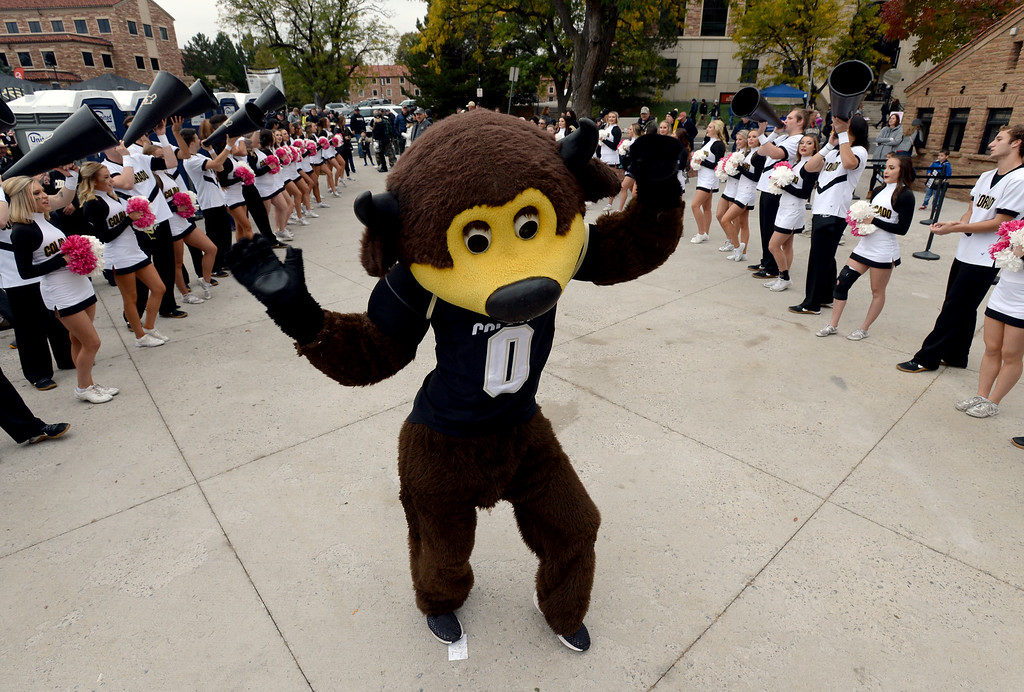 . BOULDER, CO: October 6, 2018: Chip the buffalo performing before the game with Arizona State on October 6, 2018. (Photo by Cliff Grassmick/Staff Photographer)