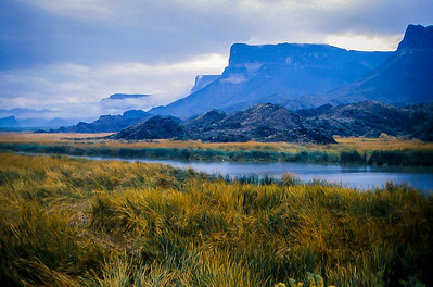 Bill Williams River National Wildlife Refuge, Parker AZ