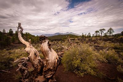 Sunset Crater National Park, Flagstaff AZ