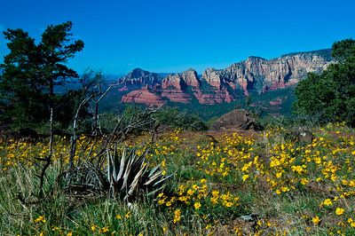 Schnebly Hill Vista, Sedona