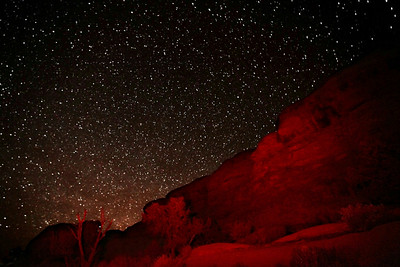 Starry Night in the Canyonlands