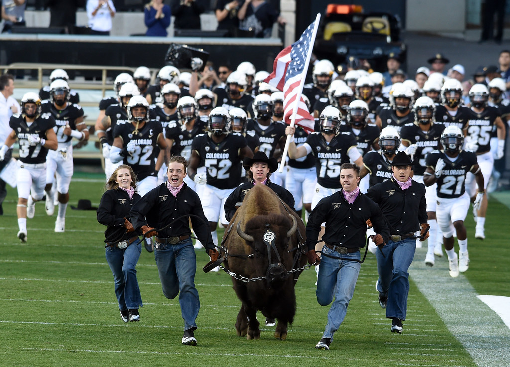 . Here comes Ralphie before  the CU game with Arizona.  Cliff Grassmick / Staff Photographer/ October 7, 2017